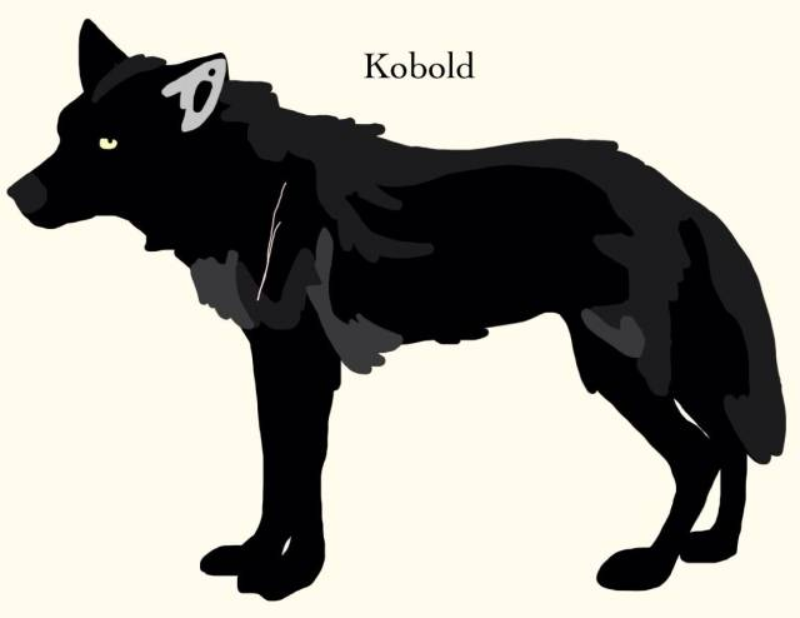 Kobold - Male