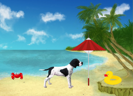 Take to the countryside with your English Pointer!